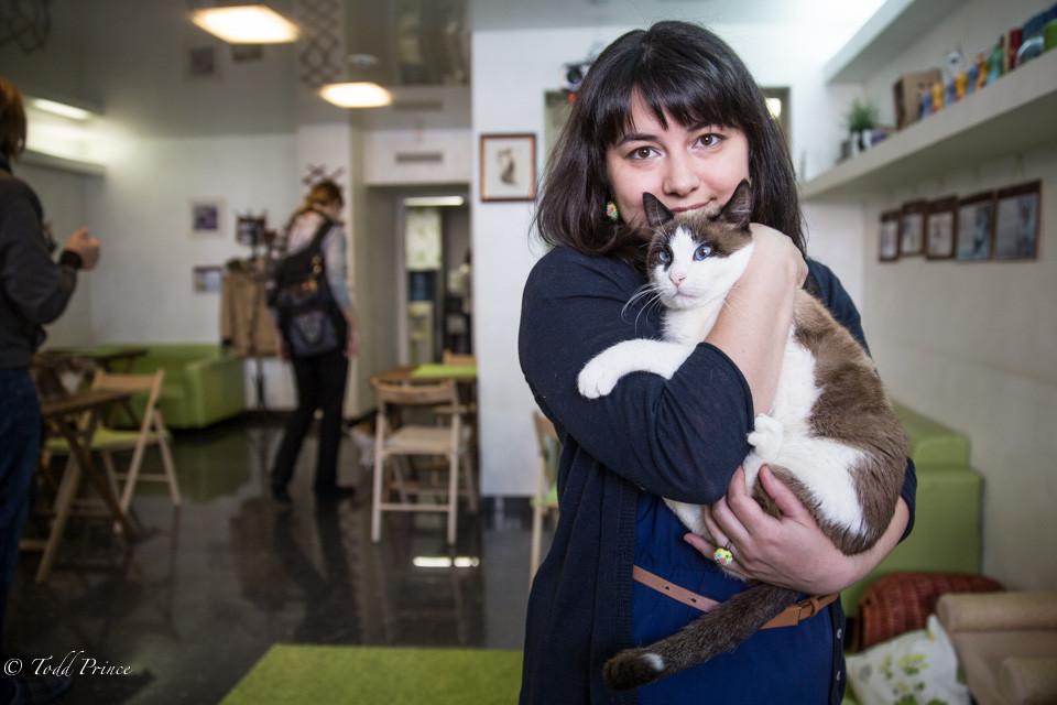 Alyona: Cat Time Cafe Owner